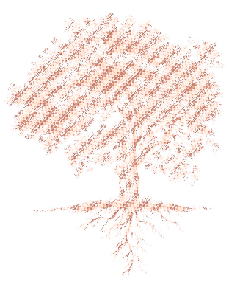Von Pflanzen und Menschen Information Design